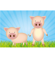 cute cartoon pigs with grass and sky vector image