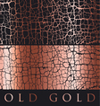 cracky surface decorative antique textured gold vector image