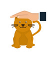 hand pet cat protection health care animal vector image