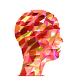 Human head Abstract of triangles vector image vector image