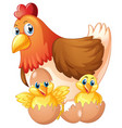 mother hen and two chicks in eggs vector image vector image