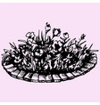 flowers in flowerbed vector image