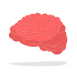 Human brain isolated Brain on white background vector image