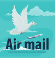 air mail service banner with plane and pigeon vector image vector image