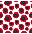 bright red poppies seamless pattern vector image