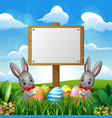 easter bunnies with eggs and blank sign on the fie vector image vector image