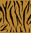 tiger texture seamless animal pattern background vector image vector image