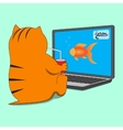 Cat sitting in front of computer with cup of drink vector image vector image
