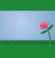 flower and field of grass with blank space paper vector image