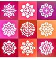 set nine decorative mandala ornaments vector image
