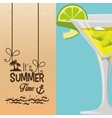 summer time cocktail banner vector image
