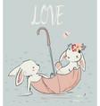 two cute hares vector image