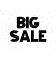 big sale coupon with black calligraphy font vector image