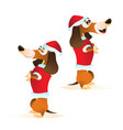 cartoon brown dachshund in santas hat and red vector image vector image