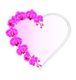 frame heart shaped orchid phalaenopsis purple vector image vector image