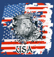 hand drawn portrait of lion and usa flag vector image vector image