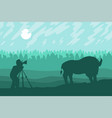 photographer photographs bison vector image