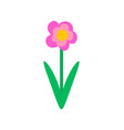 spring pink flower in flat style isolated vector image vector image