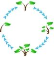 Tree symbols vector image