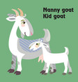 cartoon goats vector image vector image