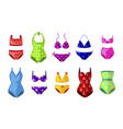colorful female beachwear swimwear lingerie vector image