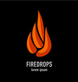 Fire flames in a drop shape logo template vector image vector image