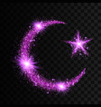purple particles wave in form of crescent and star vector image