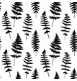 seamless pattern with fern leaves silhouettes vector image