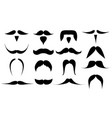 set various mustaches isolated vector image