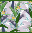 tropic summer painting seamless pattern vector image