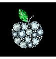 Diamond Apple vector image vector image