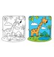 Giraffe Coloring book vector image vector image
