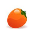 ripe persimmon vector image vector image