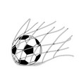 soccer ball in the net vector image vector image