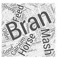 To Bran Mash Or Not To Bran Mash Word Cloud vector image vector image