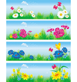 banners with flowers in meadow vector image vector image
