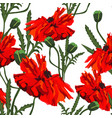beautiful red poppies flowers pattern vector image