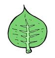 comic cartoon leaf vector image vector image