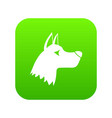 doberman dog icon digital green vector image