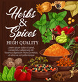 herbs spices food condiments on wood background vector image