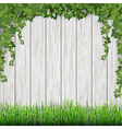 ivy and grass on wood vector image vector image