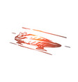 luge winter sport ice speed concept vector image vector image