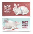 not tested on animals banners vector image vector image