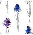 seamless pattern with flowers of iris vector image vector image