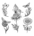 butterfly and flowers doodle sketch icons vector image
