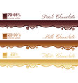 cacao chocolate healthy vector image