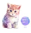 set of watercolor Cute cat vector image
