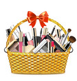 basket with makeup cosmetics vector image vector image