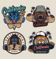 colorful skateboarding vintage emblems vector image vector image