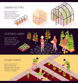 greenhouse isometric banners vector image vector image